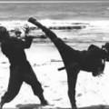 asarticlerecords-346.ninja2